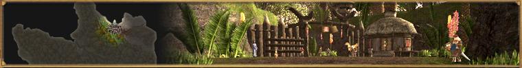 Pueblo Ciudad Final Fantasy XI XIR