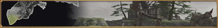 Norvallen FFXIR2 new