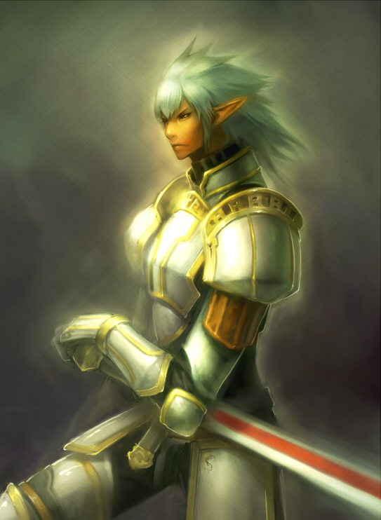 Elvaan de armadura brillante de FinalFantasyXI FFXI FFXIR